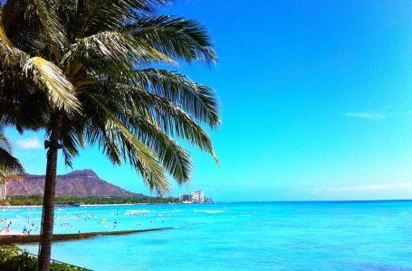 【ハワイ旅行予約】要点を押さえてスムーズな予約を!初心者向け旅行予約はこの方法がおすすめ!