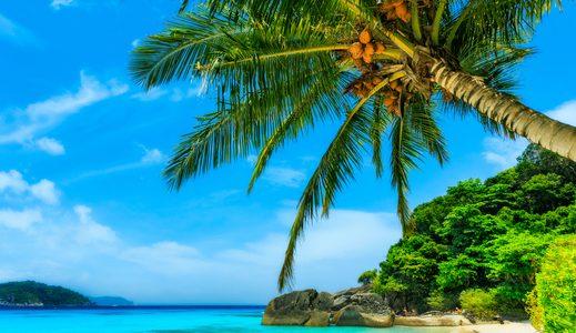 ANAマイルを利用したハワイへの航空券を簡単に発券!特典航空券が取れないで悩んでいませんか?